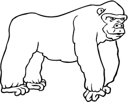Stoere Gorilla Kleurplaat Gratis Kleurplaten Printen
