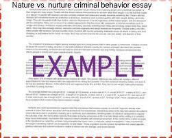 writing contest essay outline pdf