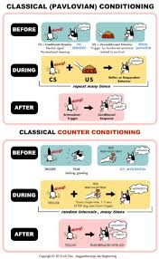 best ideas about operant conditioning classical classical conditioning counter conditioning