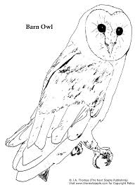 Owl Coloring Pages Free Adult Printable Coloring Pages Free