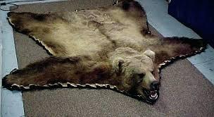 fake bear rug rug bear game rugs fake bear rug for bear rug cost per fake bear rug