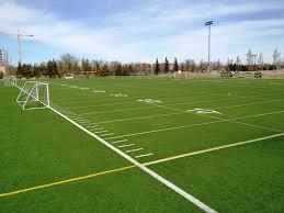 artificial turf soccer field. Artificial Turf Soccer Field S