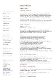 Contractor Resume Template Best Of It Contractor Cv Template Rioferdinandsco