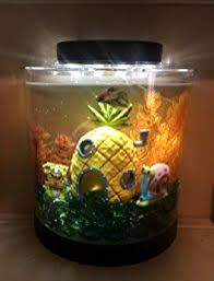 betta fish aquarium tank 1 1 gallon desk table top decor decorations mini kids 1 of 12free