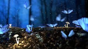 Blue Butterflies Fly Up On Mushroom 4K ...