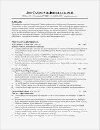 Project Manager Resume Summary Examples Senior Project Manager Resume Pdf format Business Document 5