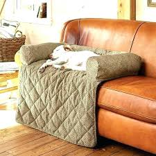 dog proof couch waterproof pet furniture covers couch covers for dogs pet sofa covers dogs in