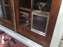 attach the dog door