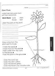 17 Science Worksheets For 1st Grade, 1st Grade Science Worksheets ...