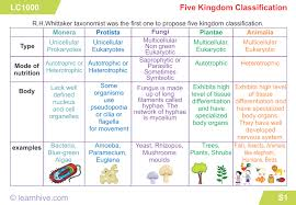 Plant Kingdom Classification Chart For Kids Learnhive Cbse Grade 9 Science Diversity In Living