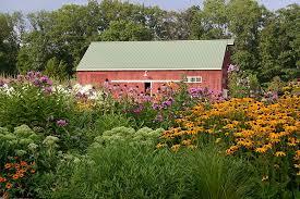 Image result for native plant landscaping