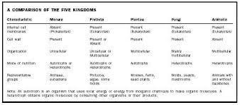 Table kingdom animalia Phylum Chordata Kingdom Biology Reference Kingdom Biology Encyclopedia Cells Plant Body Process Animal