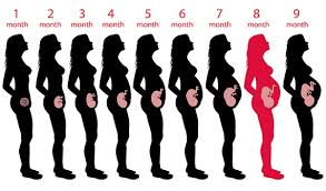 Pregnancy Diet Chart Month By Month In Marathi Diet Plan For 8th Month Pregnancy Foods To Eat Avoid
