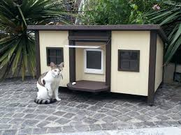 outdoor cat shelter for multiple cats build house insulated plans uk free designs houses images of