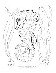 The Very Hungry Caterpillar Coloring Page Ohioairinfo
