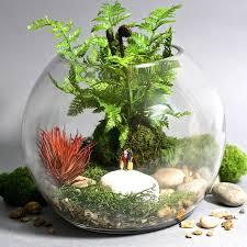 Faux Plant Terrarium Kit