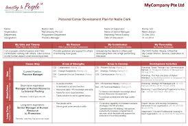 career plan doc tk career plan 17 04 2017