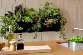 Kitchen Garden Cookbook Indoor Garden Madegincom