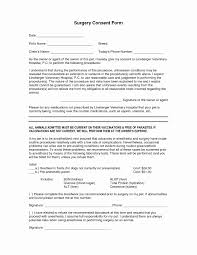 Employee Expense Reimbursement Form Template Or Surgery Cons On ...
