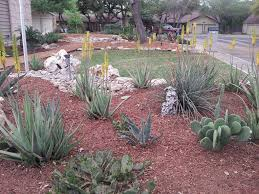 Landscape Design San Antonio Texas Watersaver Landscapes Ready For Their Close Up Rivard Report