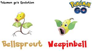 Pokemon Gos Evolution Bellsprout Evolves Into Weepinbell