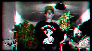 Small Picture Kottonmouth Kings In my Garden 3D YouTube