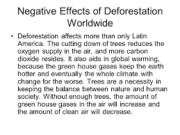 essay finale terry luong orso ppt negative effects of deforestation worldwide