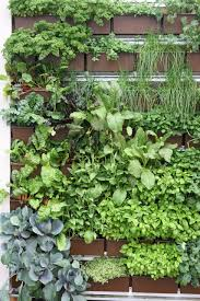 ... living wall planter diy since the installation of new green system roof  davits have been installed ...