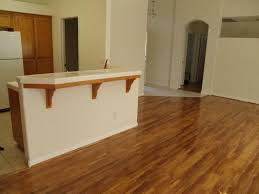Floors For Kitchens Best Kitchen Flooring Options Tile Ideas With White Cabinets Best Tiles