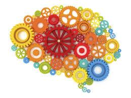 Risultati immagini per stimolazione cognitiva esercizi