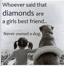 Quotes About A Girl And Her Dog Impressive Pin By K Ford On So True Pinterest