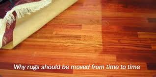 why rugs should be moved