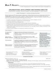Free Teaching Resume Template Custom Free Professional Resume Templates Microsoft Word Stepabout Free