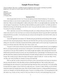 essay explanation essay examples statutory interpretation essay essay examples of process essays format college essay process template explanation