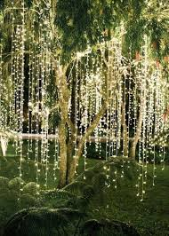 tree lighting ideas. Awe-struck Wedding Reception Tree Lighting Ideas. Ideas Z