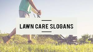 115 Catchy Lawn Care Slogans Taglines For Your Business