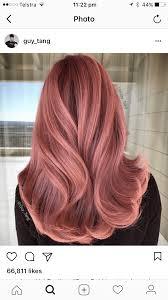 Roze Haar Trend