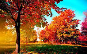 Autumn Desktop Wallpapers Backgrounds ...