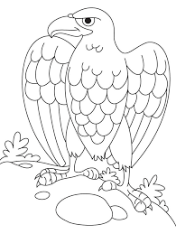 6cr59ggcK eagles coloring pages printable vosvete net on printable coloring picture of an eagle