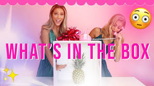 WHAT'S IN THE BOX CHALLENGE?! w/ Ava and Lala! - YouTube