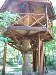 tree house plans. Tree House Plans Lovely For Kids Best Wraparound Treehouse Houses O