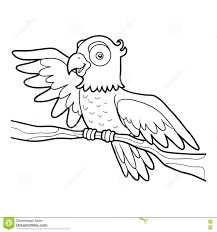 Animaux Coloriage Perroquet Coloriage Perroquet Pirate Coloriage