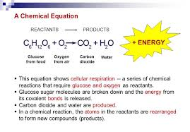 this equation shows cellular respiration a series of chemical reactions that require glucose