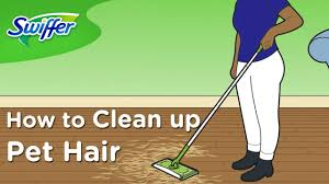 how to clean dog and cat hair with swiffer sweeper ep 3 swiffer
