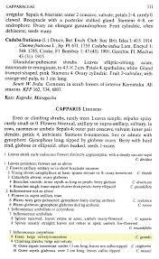 herbarium jcb herbarium