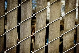 Plain Chain Link Fence Slats Ideas For Design Inspiration