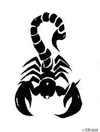 Retrouvez disney, pokemon, winx club, diddl, dragon ball z, naruto, astérix, bob l'eponge, et des milliers d'autres images à colorier. Free Download Dessin Et Coloriages Tte De Mort Imprimer Pour Colorier 600x795 For Your Desktop Mobile Tablet Explore 36 Tribal Scorpion Wallpaper Tribal Scorpion Wallpaper Scorpion Wallpapers Scorpion Wallpaper