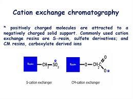 Ion Exchange Chromatography Online Presentation