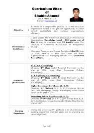 Free Resume Templates Cool Cv Template Vita Sample Model