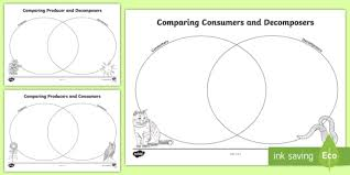 Producer And Consumer Venn Diagram Consumers Producers And Decomposers Venn Diagram Worksheet